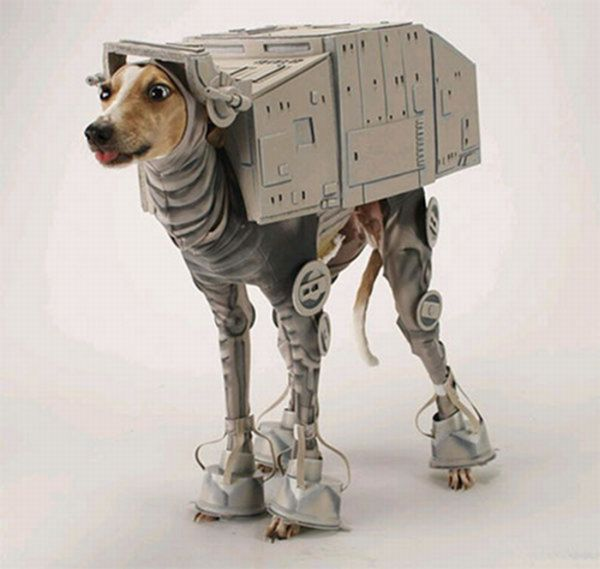 movie dog 7 (600x569, 38Kb)